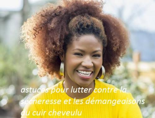Cheveux afro1