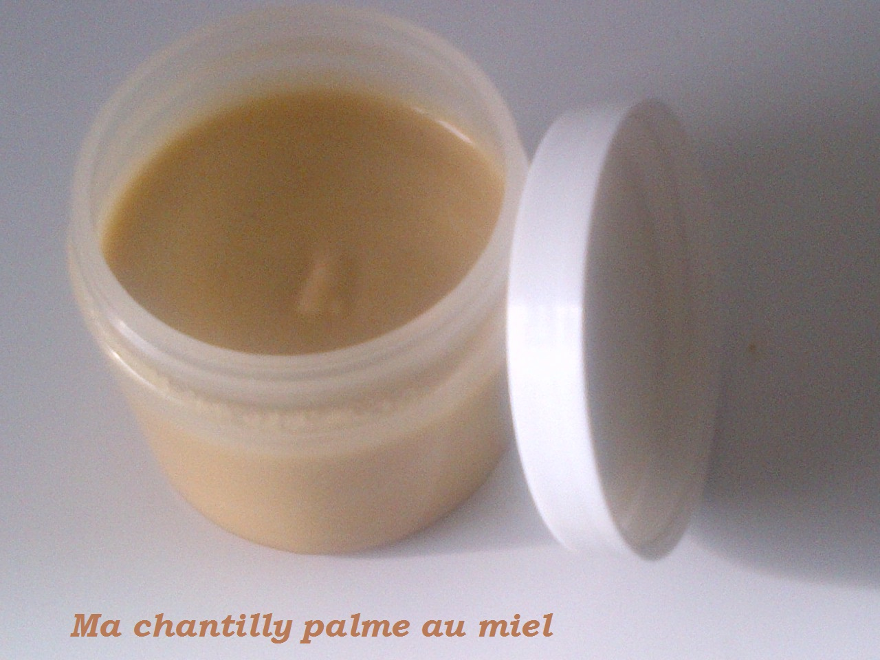 Ma-chantilly-de-palme